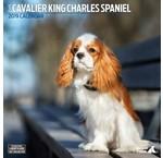 Cavalier King Charles Spaniel Kalenders 2020