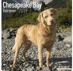 Chesapeake Bay Retriever Kalenders 2020