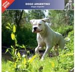 Argentijnse Dog Kalenders 2020