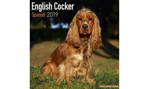 Engelse Cocker Spaniel Kalenders 2019