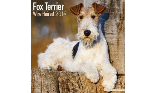 Fox Terrier Kalenders 2019