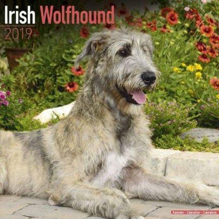 Irish Wolfhound Kalender
