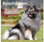 Keeshond Calendriers