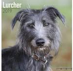 Lurcher Kalenders 2019