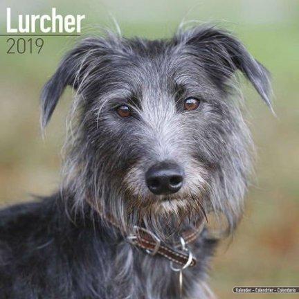 Lurcher Kalender