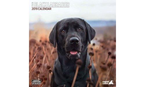 Labrador Retriever Zwart Kalenders 2019