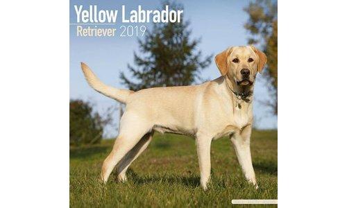 Labrador Retriever Blond Kalenders 2019