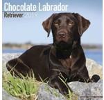 Labrador Retriever Bruin Kalenders