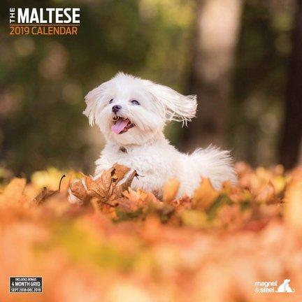 Maltese Kalender