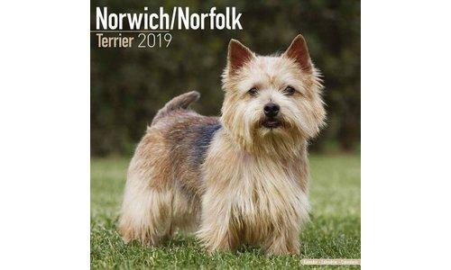 Norwich Terrier Kalenders 2019