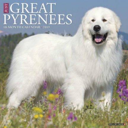 Pyrenäen Berghund Kalender