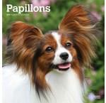 Papillon Kalenders 2019