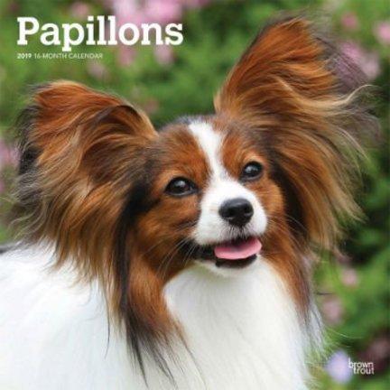 Papillon Calendars