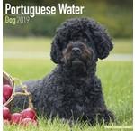 Portuguese Water Dog Calendars