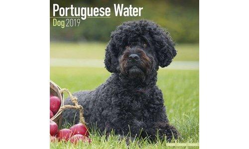 Portugese Waterhond Kalenders 2019