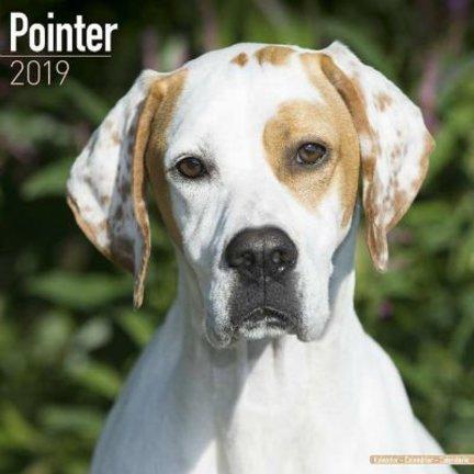 Pointer Kalenders 2019