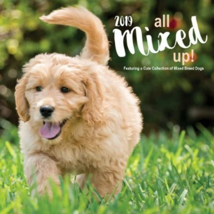 Termes chiens calendriers