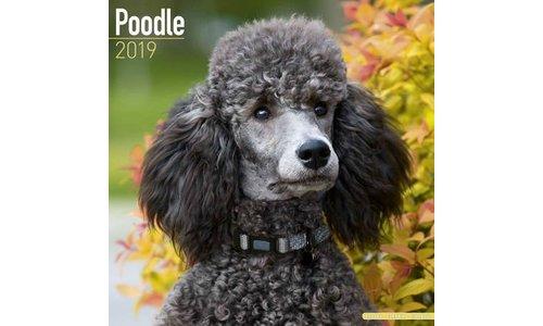 Poedel Kalenders 2019