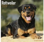Rottweiler Kalenders 2019