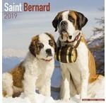 Calendriers Saint-Bernard