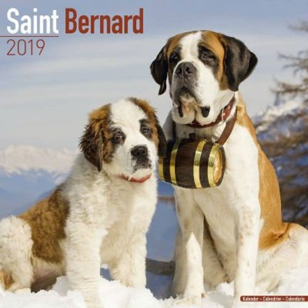 Saint Bernard Calendars