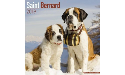 Sint Bernard Kalenders 2019