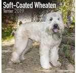 Softcoated Wheaten Terrier Kalenders