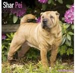Shar Pei Calendars