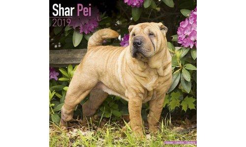 Shar Pei Kalenders 2019