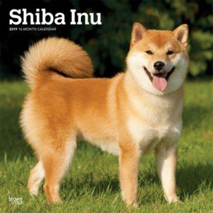 Shiba Inu Calendriers