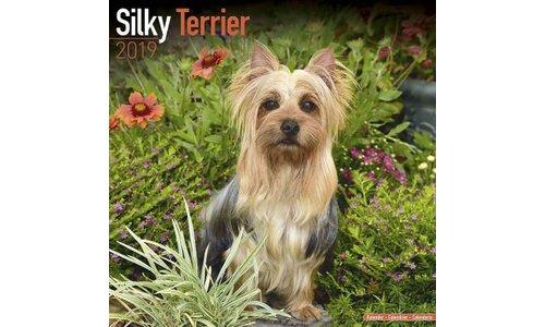 Silky Terrier Kalenders 2019