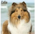 Collie Calendars