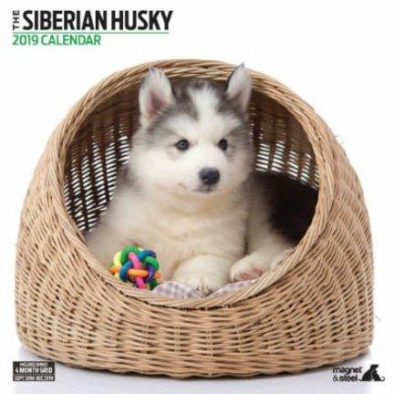 Siberian Husky Kalenders 2019