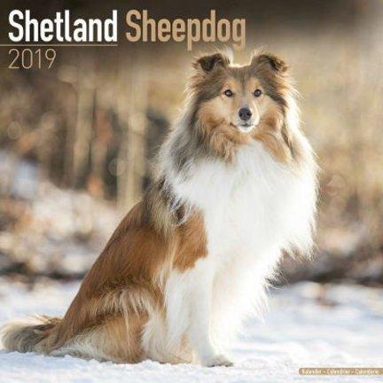 Shetland Sheepdog Kalenders 2019