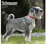 Schnauzer Kalenders 2019