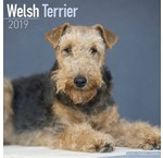 Calendriers Welsh Terrier