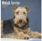 Welsh Terrier Kalenders