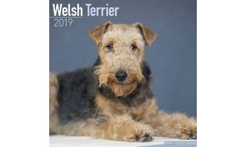 Welsh Terrier Kalenders 2019