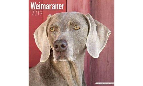 Weimaraner Kalenders 2019
