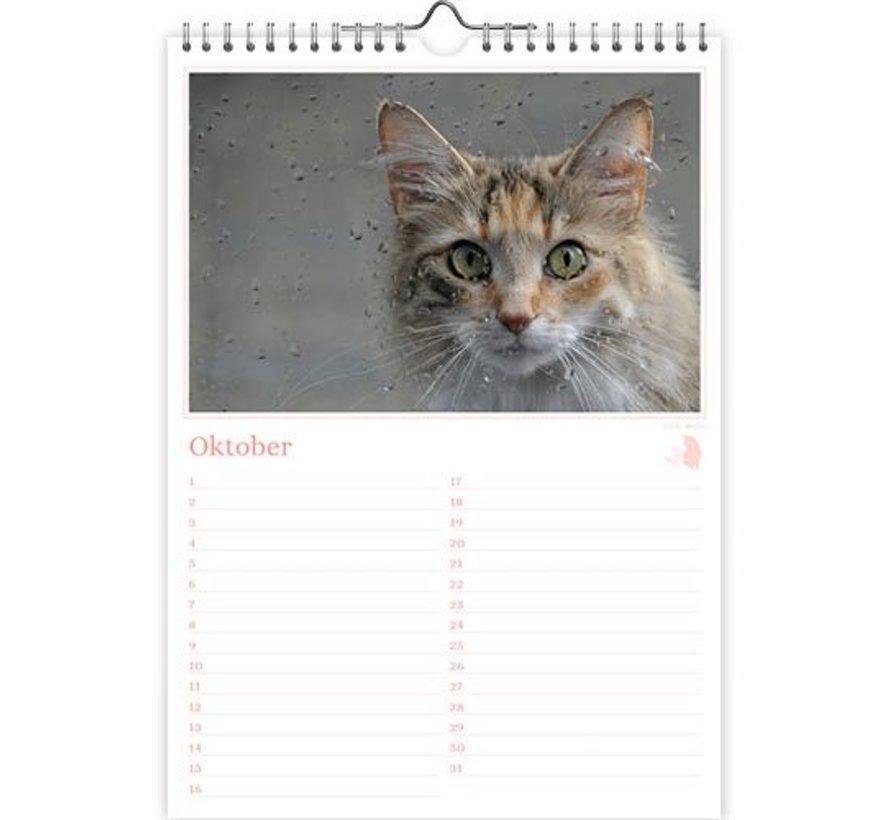 Katten foto verjaardagskalender A4