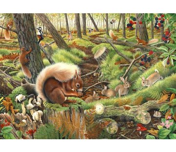The House of Puzzles Save our Squirrels Puzzel 1000 Stukjes