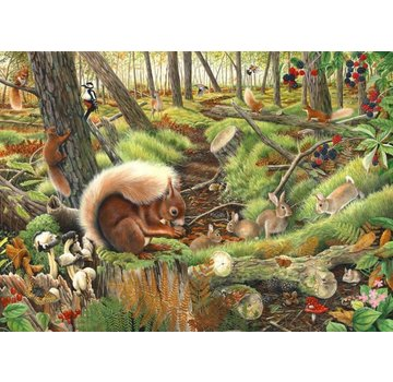 The House of Puzzles Save our Squirrels 1000 Puzzle Pieces