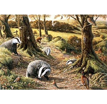 The House of Puzzles Badgers Dell Puzzle 1000 Stück