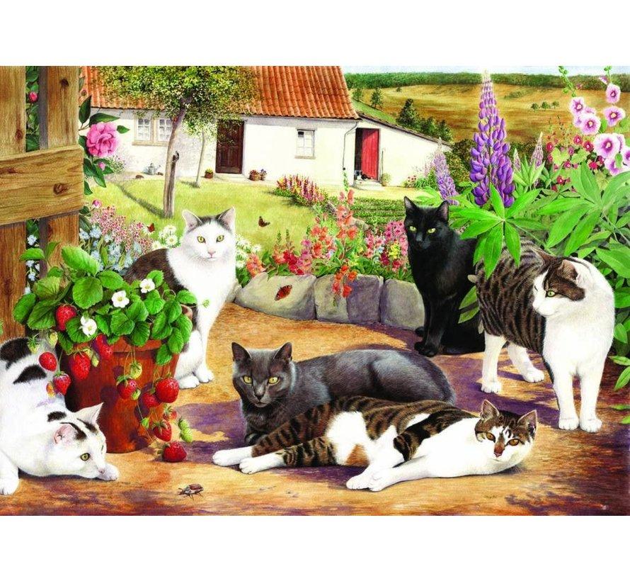 Cool Cats Puzzel 500 Stukjes XL