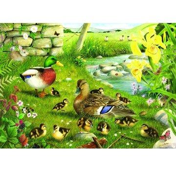 The House of Puzzles Ducks Puzzle eau Pièces XL 500