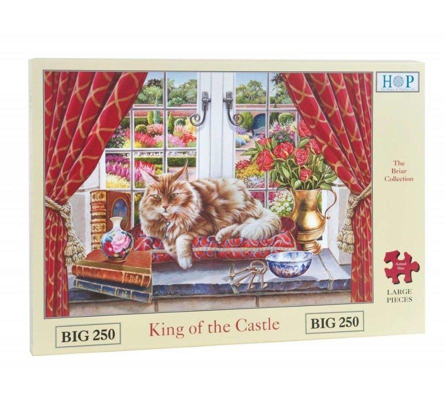 King of the Castle Puzzel 250 Stukjes XL