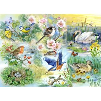 The House of Puzzles Feathered Friends Puzzel 250 Stukjes XL