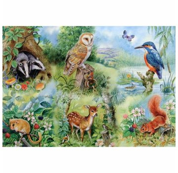 The House of Puzzles Nature Study 250 Puzzle Pieces XL
