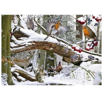 The House of Puzzles Winter Holz Puzzle 500 Stück