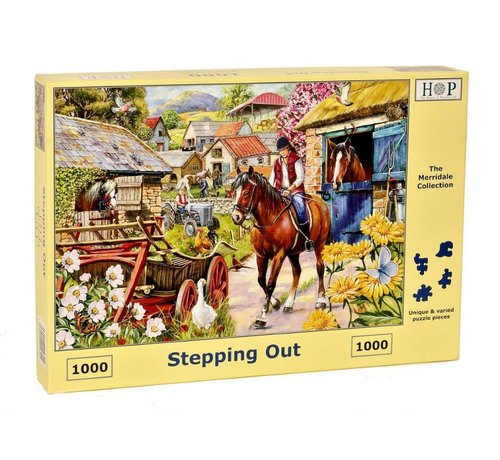 The House of Puzzles Stepping Out Puzzel 1000 stukjes